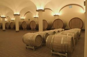 panorama vino