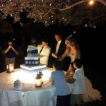 wedding planner fiocchi di riso2