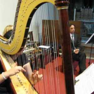 Musica per cerimonia