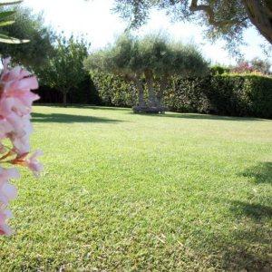 villa gisana esterni giardino2